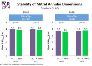 図2 EVEREST trial 5年の成績(DMRとFMRにおける弁輪径の比較)