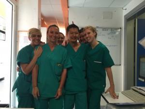 写真2:看護師の仲間たち